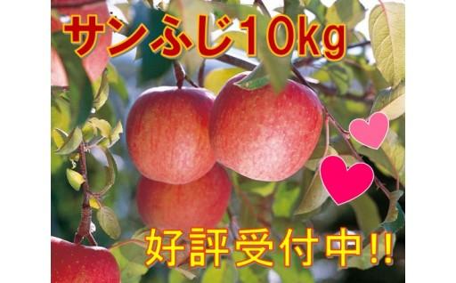 ★☆好評受付中☆★ サンふじりんご 10kg