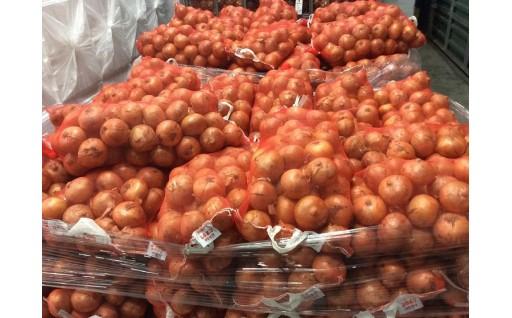 なんぽろ産減農薬たまねぎ20㎏