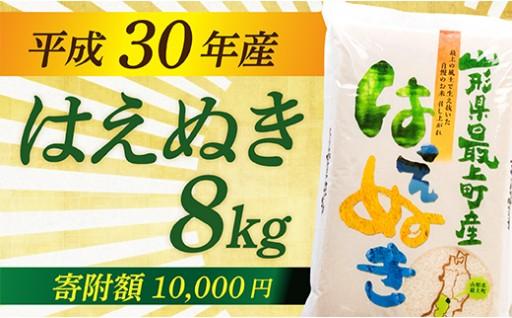 平成30年産 山形県最上町産はえぬき8kg