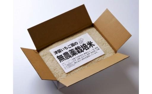 無農薬米「ひのひかり」<6kg>