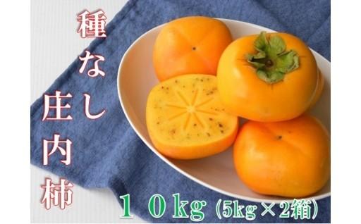 柔らかく、とろけるような甘さの庄内柿【10kg】