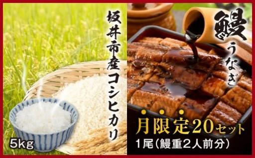 【数量限定】坂井市産コシヒカリ + 炭火焼き鰻