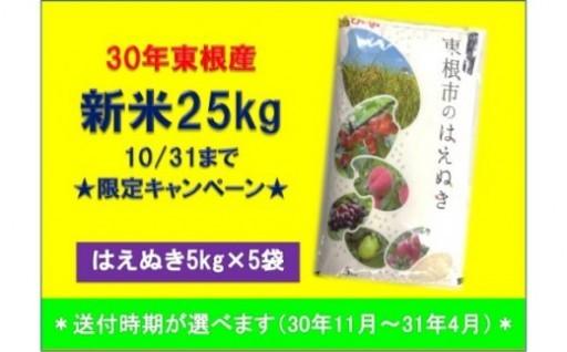 【10/31までの限定!】はえぬき新米25kg!