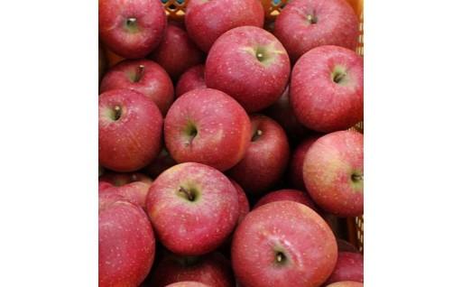 【須賀川市産りんご】農産物直売所から直送
