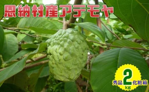 【2019年発送】恩納村産アテモヤ 2kg 秀品