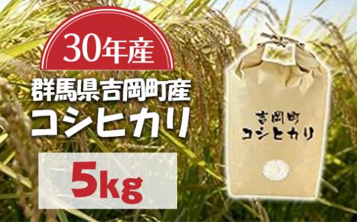 【数量限定!】吉岡町産30年産新米コシヒカリ