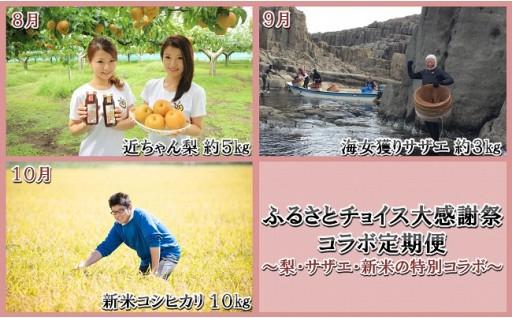 【チョイス感謝祭出店中!】大感謝祭コラボ定期便