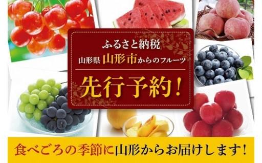 平成31年産フルーツ先行予約スタート!!