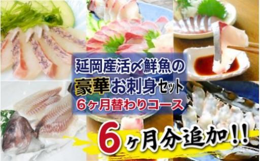 延岡産活〆鮮魚の豪華お刺身月替わりコース増量中!