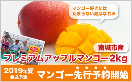 先行予約!芳醇な香りの沖縄県産マンゴー受付開始!
