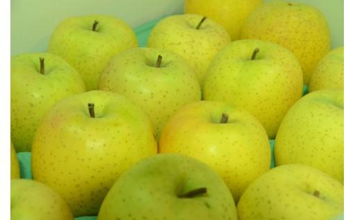 年内にお届け!黄色いりんごの代表「王林」