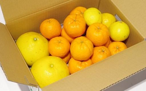 季節の柑橘農家おまかせ 10kg(家庭用)