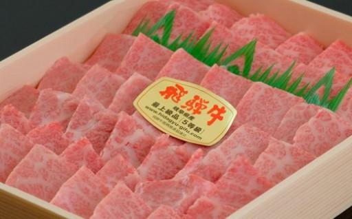 【最高級】飛騨牛A5ランク 霜降り焼肉