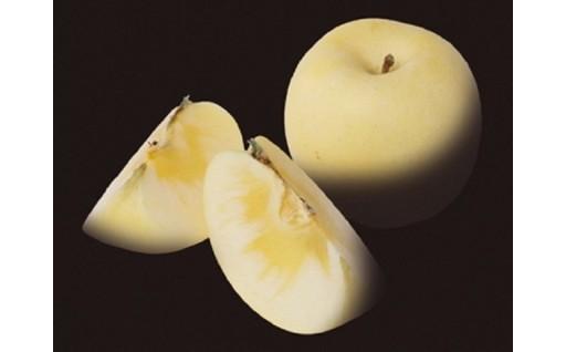 二戸産りんご「冬恋」受付スタートです。