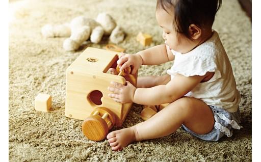 木のおもちゃ 赤ちゃんの宝石箱はいかがですか?