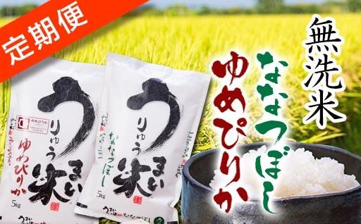 うりゅう米「ななつぼし・ゆめぴりか」無洗米定期便