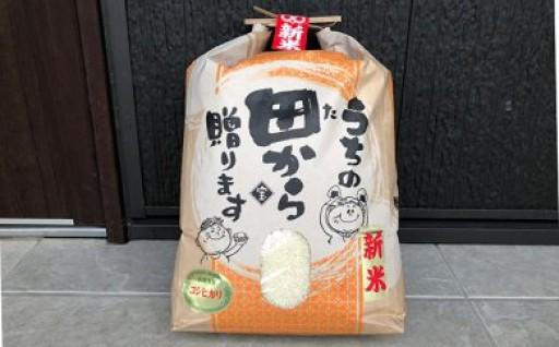 数量限定!富山県朝日町産コシヒカリ白米9kg