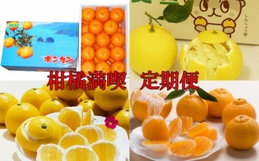 柑橘の里 かんきつ満喫 定期便