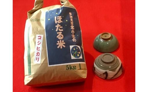 【美濃焼】茶碗2個とコシヒカリ「ほたる米」