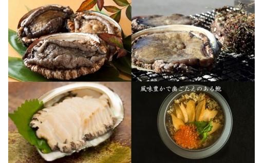 【期間限定】高級食材の「アワビ」特集!
