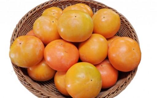 上毛町のブランド柿「大平柿」追加20セット