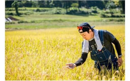 2年連続でギネス認定世界最高米の原料米!!