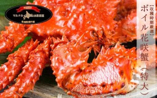 【北海道根室産】ボイル花咲蟹姿1尾