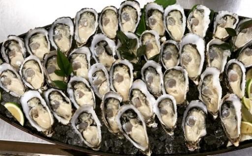 限定50セット!海陽町産真牡蠣約1㎏(約10個)
