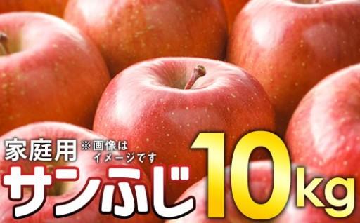 数量限定【訳あり】ふぞろいのりんご達 約10kg