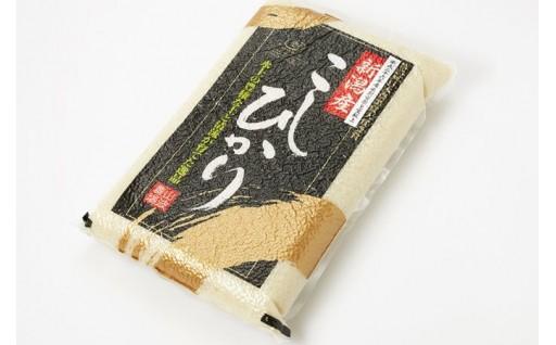 【白米5kg 5ケ月定期便】特別栽培米コシヒカリ