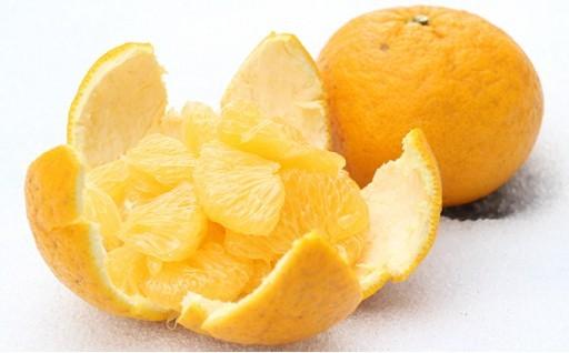 ★農薬・化学肥料未使用★甘夏みかん 10kg