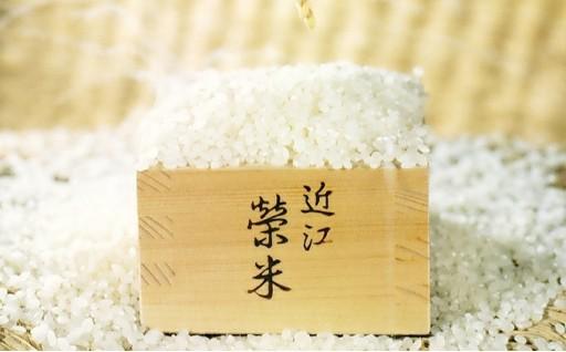 豪華なお米のセット!