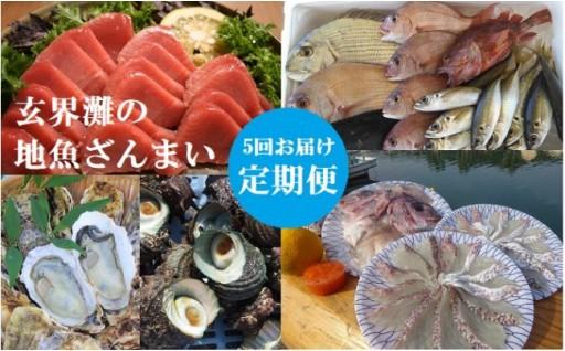 真鯛にサザエ、玄海灘の地魚ざんまい定期便