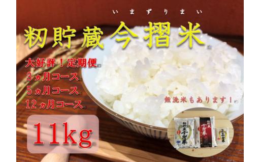 大好評!籾貯蔵 今摺米(いまずりまい)