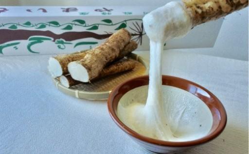 滋養たっぷり南阿蘇の自然薯です