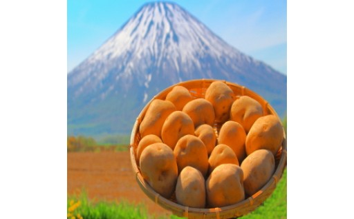 【絶品】北海道産じゃがいもがなんと20kgも!!