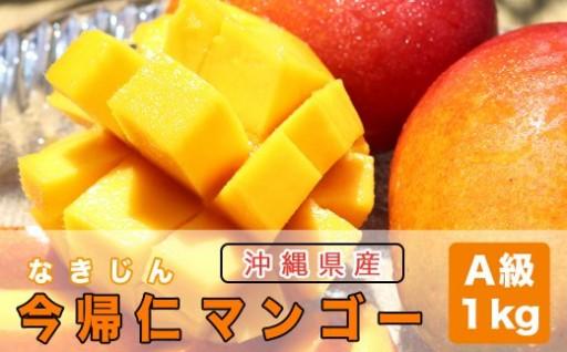 【先行予約】今帰仁マンゴーA級品1kg