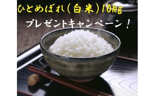 「抽選でお米10kg差し上げます!」