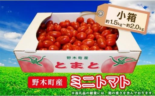甘さが自慢のミニトマトをたっぷりお届け!!