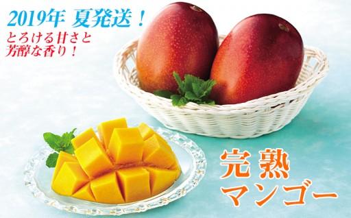 とろける甘さと芳醇な香り!完熟マンゴー