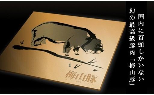 国内に100頭しかいない幻の豚「梅山豚」