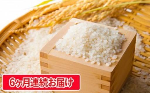 【6ヶ月連続お届け】駒ヶ根産コシヒカリ 5kg
