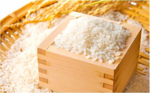 東吾妻町産 特別栽培ブランド米 さくや姫