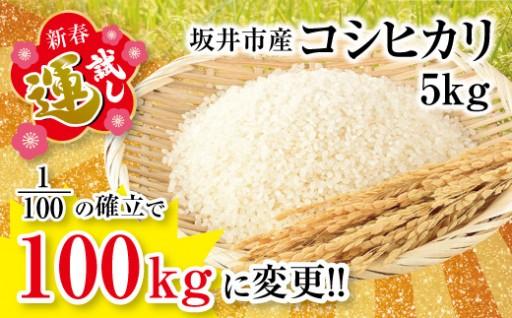 【新春 運試し!】 坂井市産コシヒカリ5kg
