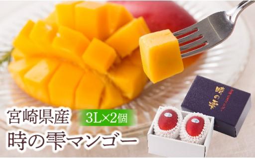 宮崎のトップブランドマンゴー『時の雫』