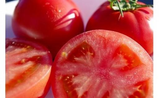 【今月受付終了】とにかく甘い!!KISSトマト