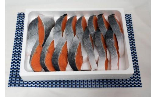 A709 塩引き鮭切り身15切れ