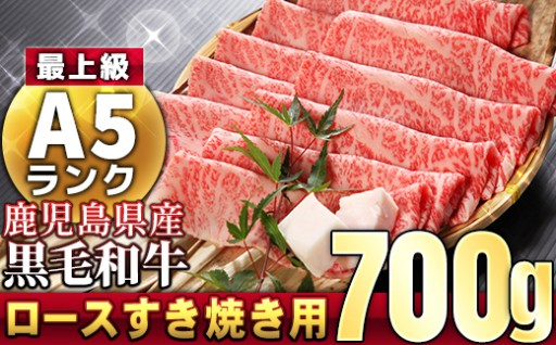 【A5等級】鹿児島県産黒毛和牛 ロース700g
