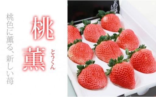 芳醇な桃の香りのいちご「桃薫(とうくん)」