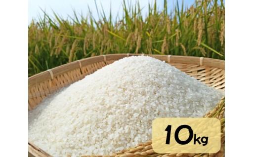 安全で美味しい米づくりを心掛けた自慢のお米♪
